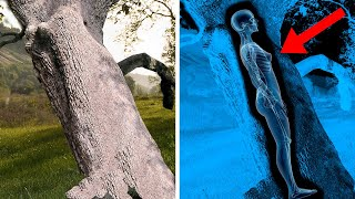 10 Most UNEXPLAINED Recent Archaeological Discoveries!