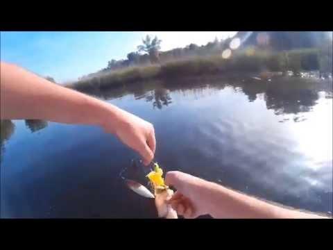 Inverno pescando su mormyshka