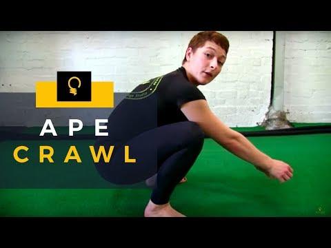 5EW Exercises: Ape Crawl