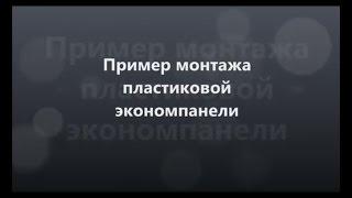 Экономпанель ПВХ (1200х255 мм) арт. ПЭ от компании ООО «Оланта» - видео