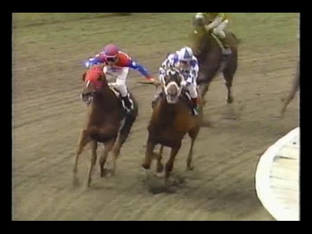 Horse Racing – Playing To Win