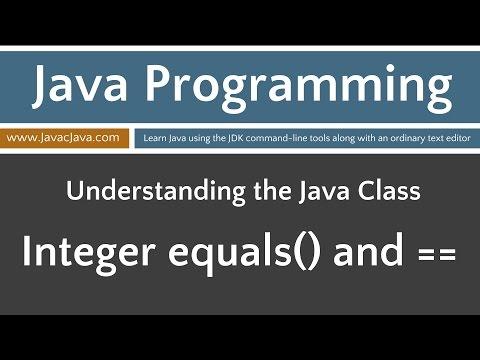 Learn Java Programming - Integer Class  equals(...)  == Tutorial