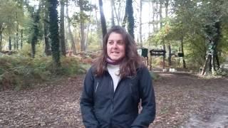 palombe.org   Le témoignage d'une non chasseuse en visite à la palombière
