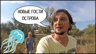 Новые Гости Острова ДЖАРЫЛГАЧ 👙 Дельфины В Море И Закат 🌅 #3