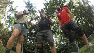 Cairns Tropical Zoo & Skyrail Promo