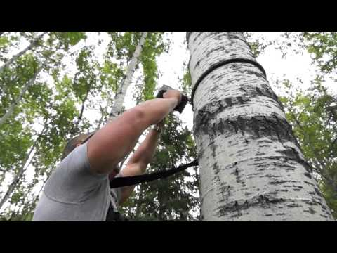 Ultimate Bowhunting TV Part 1 with Northern Alberta Outfitters