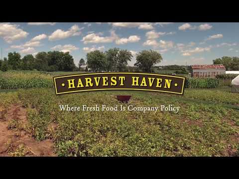 Joel Chesebro-- Harvest Haven