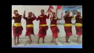 preview picture of video 'INTERNATIONAL NURSES DAY 194th celebration in UCNS BHAIRAHAWA NEPAL'