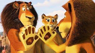 DreamWorks Madagascar | Alex Reunites With His Family | Madagascar : Escape 2 Africa | Kids Movies