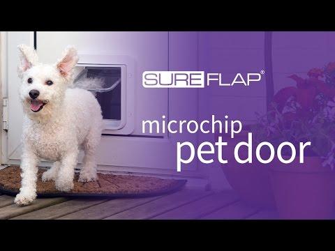 Testing the range of your SureFlap Microchip Pet Door