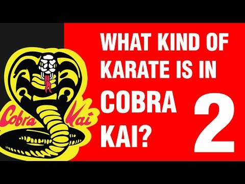 What Kind Of Karate Is In Cobra Kai? PART 2 | ART OF ONE DOJO
