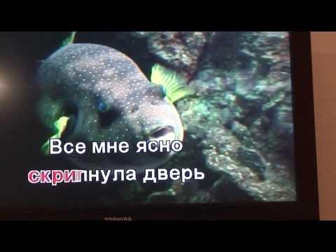 Счастье мое текст песни черкасов