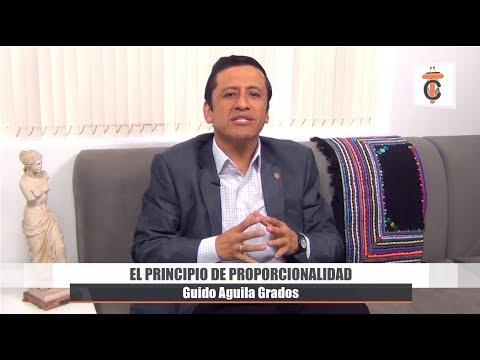 El Principio de Proporcionalidad - Tribuna Constitucional 51 - Guido Aguila Grados