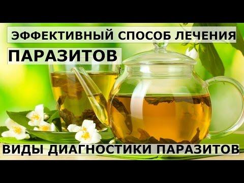 Кал на лямблии в иркутске