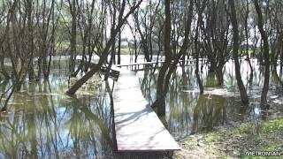 preview picture of video 'Krok sem, krok tam 32 : Trstené pri Hornáde (Lužný les)'
