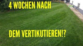 Rasen Vertikutieren und Düngen// Das Ergebnis | Rasenpflege im Juli 2017