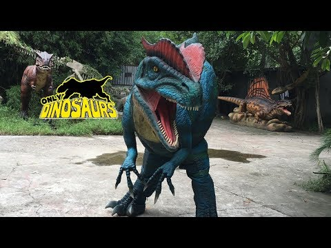 Hidden Legs Real Dilophosaurus Costume