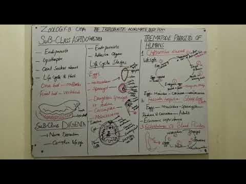 Rekombináns humán papillomavírus vakcina