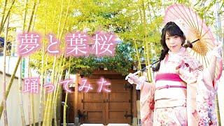 『夢と葉桜』踊ってみた【白石ありさ】
