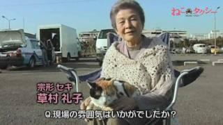 映画『ねこタクシー』出演者インタビュー/草村礼子