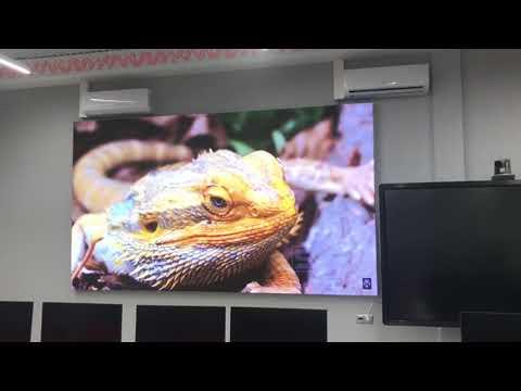 Светодиодный экран для лекций в РЭУ им. Г.В. Плеханова, г. Москва