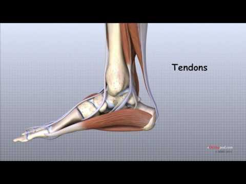 Tratament de cupru al genunchiului