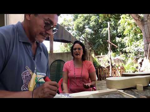 """Viola de cocho é cadeira optativa no curso da UFMT, comemora artesão- <font color=""""red"""">veja vídeo</font>"""
