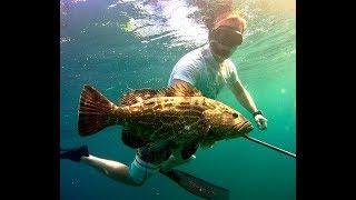 Подводная охота на Карибах. Мексика.