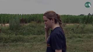 Yorkie keeps 3-year-old safe after getting lost in Missouri cornfield overnight   Love Hope Giving