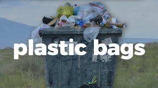 Here's how plastic bags impact the environment
