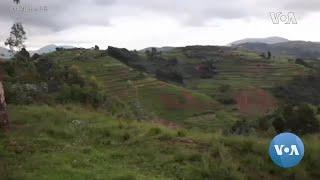 Rwandan, Armenian Genocides Remembered in April