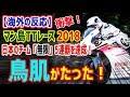 【海外の反応】マン島TTレース2018 日本のチーム「無限」が新記録樹立&クラス1位を達成!鳥肌が立った!凄すぎる!