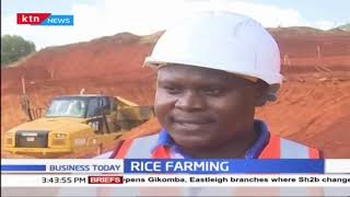 Efforts to increase rice production in Kenya underway
