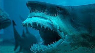 Creepy Shark With Extendable Jaw Discovered