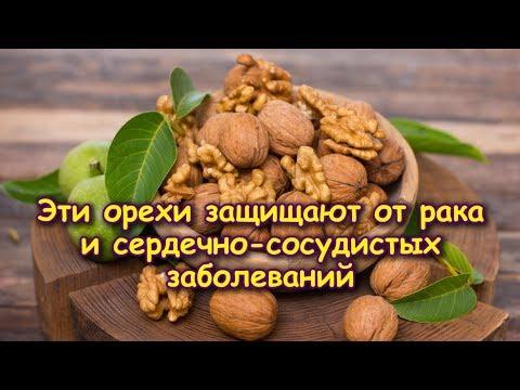 Полезно ли какао при гипертонии