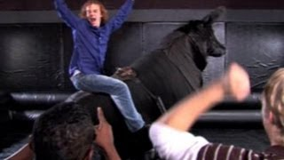 How To Get On A Mechanical Bull