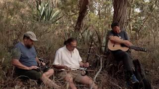 Impro en bosque de eucaliptos - Tony Peña, José Guillén, Atilio Doreste