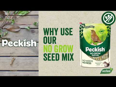 Peckish No Grow Seed Mix Video