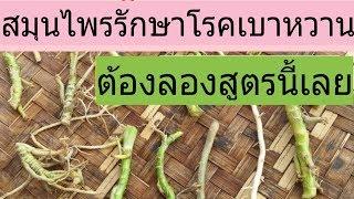 รักษาโรคเบาหวาน หายจริง 100% ภายใน 5 วัน /โดยฮอยไทย อีสาน