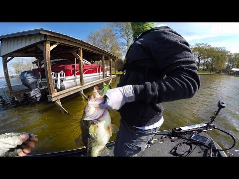Miracle Big Fish Catch