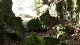 SW2240 - Ancient Woodland, Rock Formations and More!