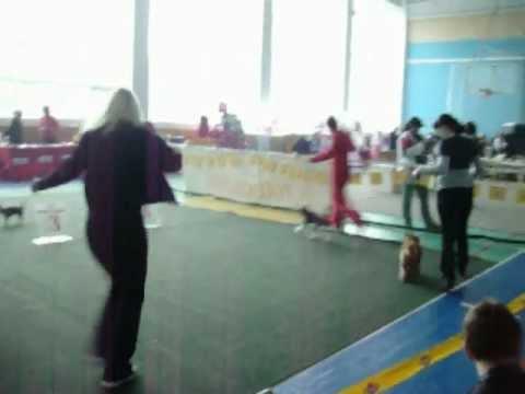 Русские талисманы амулеты