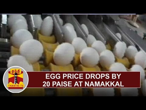 Egg-Price-Drops-by-20-Paise-at-Namakkal-Thanthi-TV