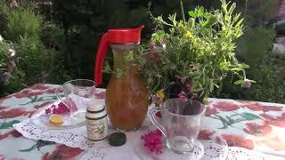 РЕЦЕПТ ХОЛОДНОГО ЧАЯ || Травяной чай и стевия
