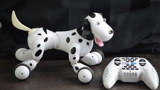 Robo Dog  RC Pes na dálkové ovládání