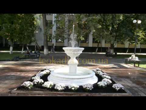 Видео к Фонтан с бассейном 031а - благоустройство территории ВУЗа №1