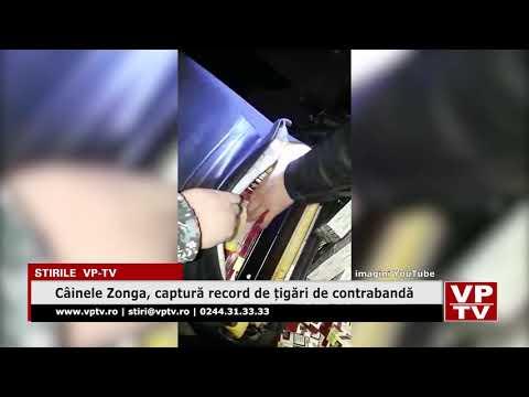 Câinele Zonga, captură record de țigări de contrabandă