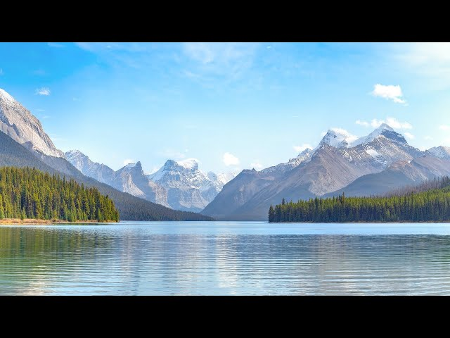 Daily Calm Live Stream: Morning Meditation
