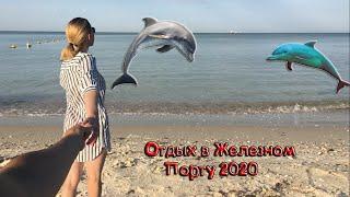 Железный Порт 2020. Дельфины в черном море. Бюджетный отдых на море.