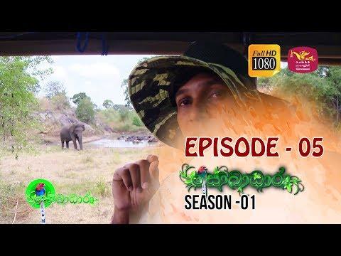 Sobadhara | Season - 01 | Episode 05 | Sobadhara Rupavahini